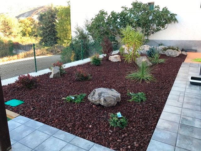Realizaci n de jard n de bajo mantenimiento con plantas for Jardines de bajo mantenimiento