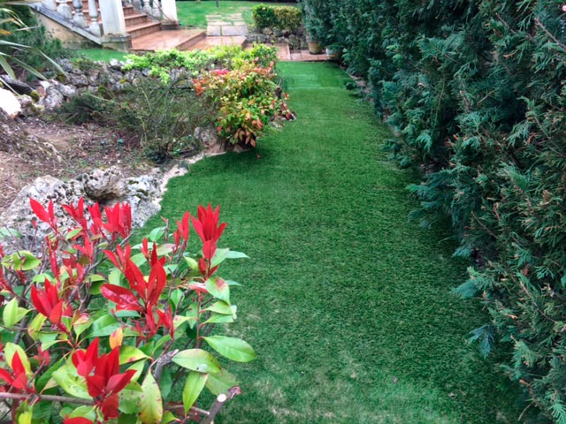 Jardines de bajo mantenimiento tecniver jardineria for Trabajo de mantenimiento de jardines