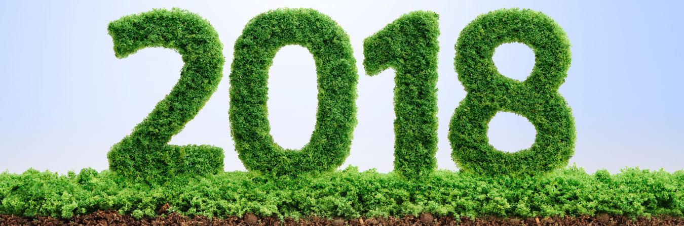 5 consejos de jardinería para el nuevo año – Tecniver Jardineria