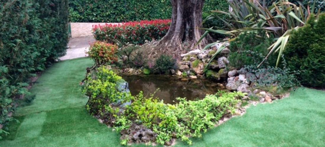 Adecuacin de jardin mediante estanque csped artificial y olivo